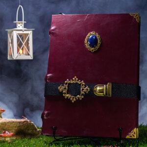 fairytail book 01