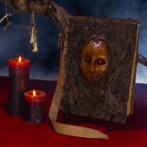 brown magic book 01