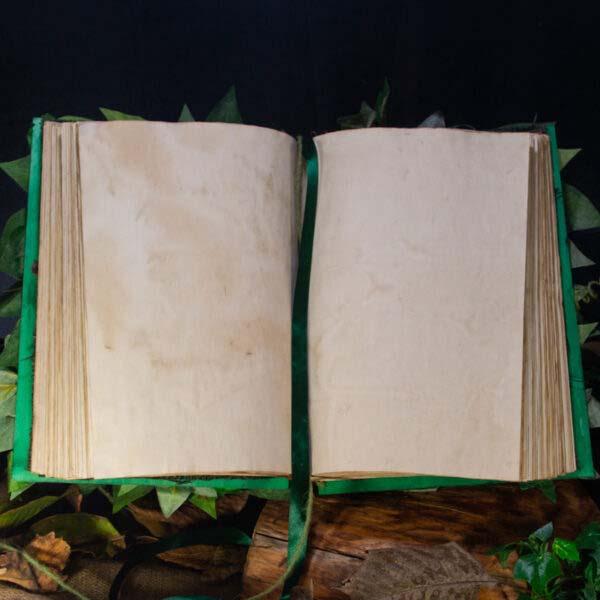 green magic book 04